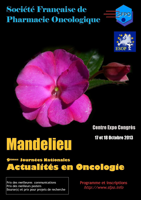 IXèmes Journées Nationales Actualités en Oncologie 2013