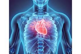 Tamoxifène et inhibiteurs de la recapture de la sérotonine : quel risque cardiaque ?